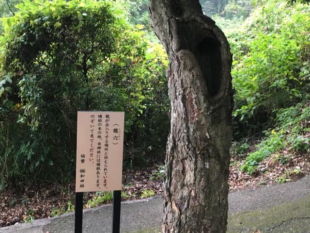 kimetsu-shrine-oita-beppu-10